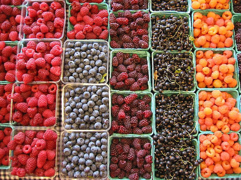 Berries-01