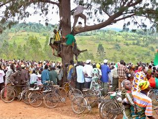Men in tree karusi